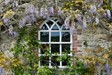 Baillie Hall Window And Wisteria